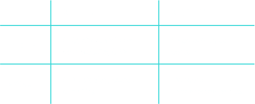 wizaly marketing attribution